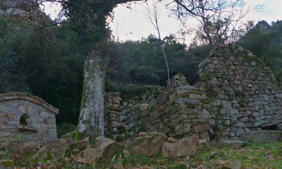 randonnée du sentier des moulins à Cuttoli | Corse VTC
