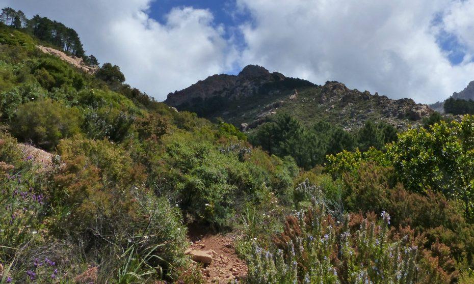 randonnée du Capu d'Ortu à Piana | Corse VTC