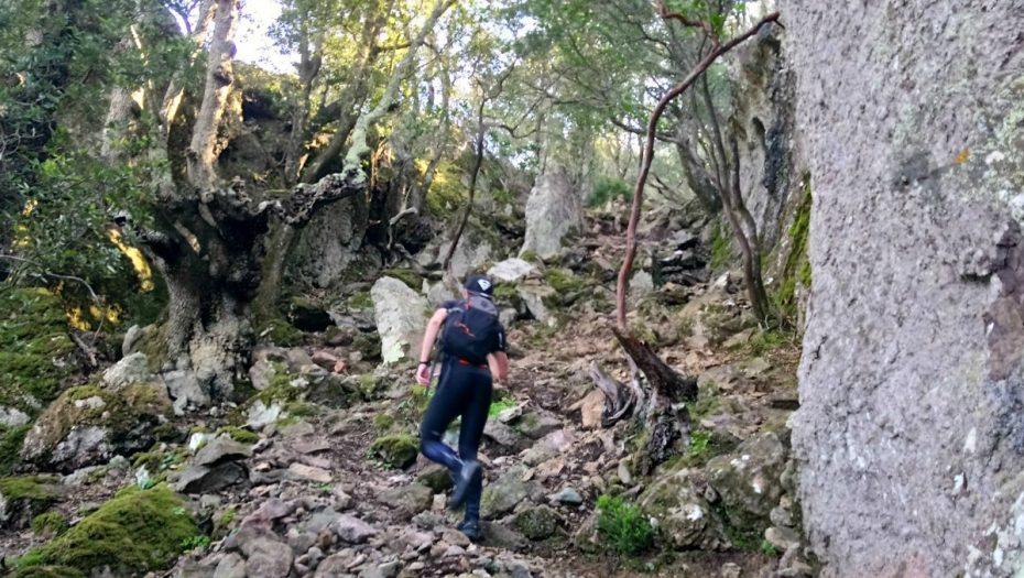 randonnée du Monte Senino à Osani | Corse VTC
