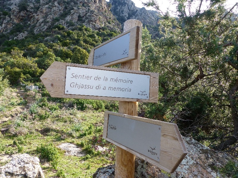 La randonnée du Monte Astu à Lama | Corse VTC