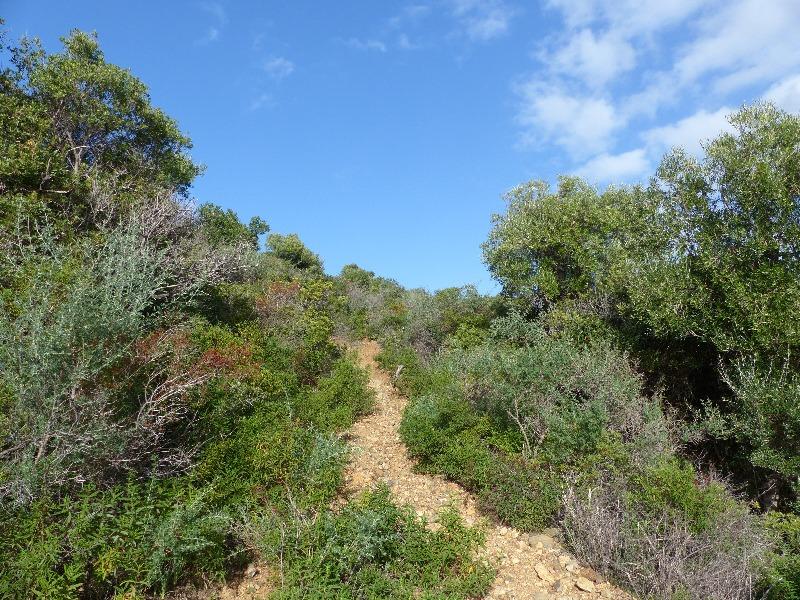 la randonnée de la tour d' Orchinu à Cargèse | Corse VTC