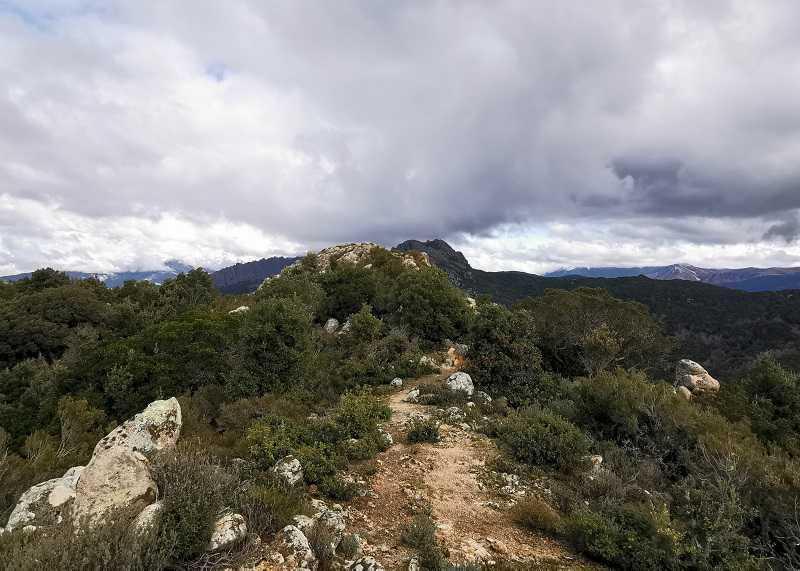 la randonnée de la Punta Maggiori à Grosseto Prugna   Corse VTC