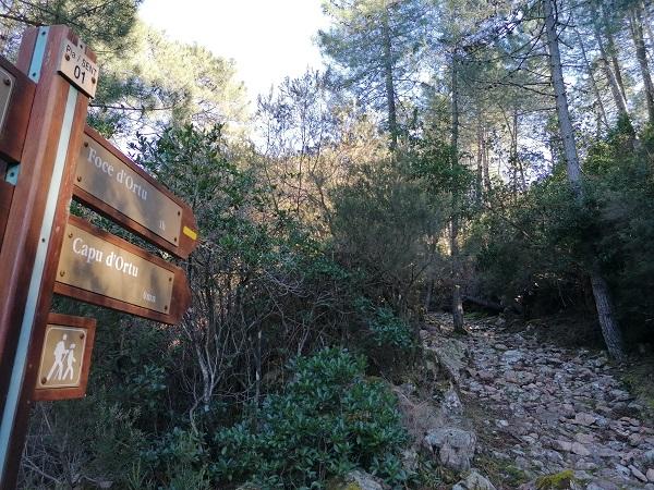 randonnée du Capu di u Vittulu à Piana | Corse VTC